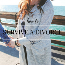 How to Survive a Divorce 101