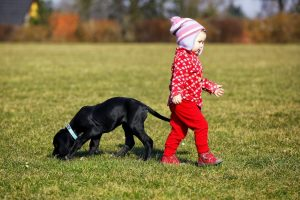 Everything You Need to Know Before Getting a Puppy For Your Child