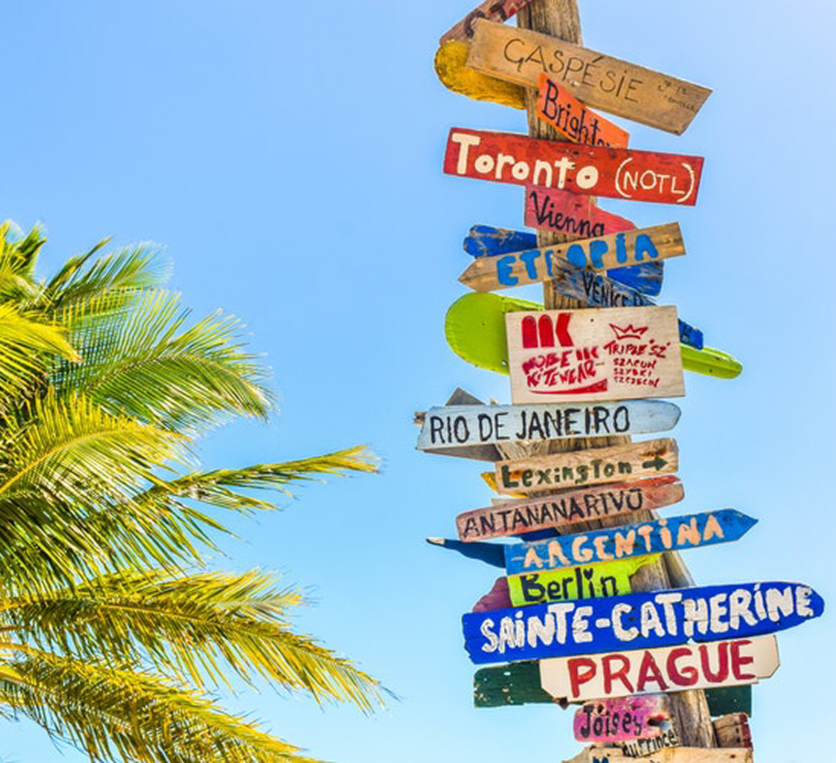 6 Steps to Planning a Successful Trip