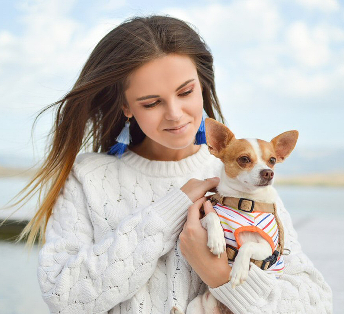 How Owning a Dog Can Benefit Your Health